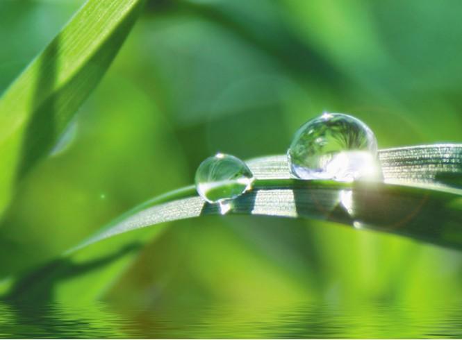 Duurzaam beschermingspapier gemaakt uit gras